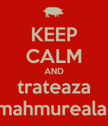 mahmureala